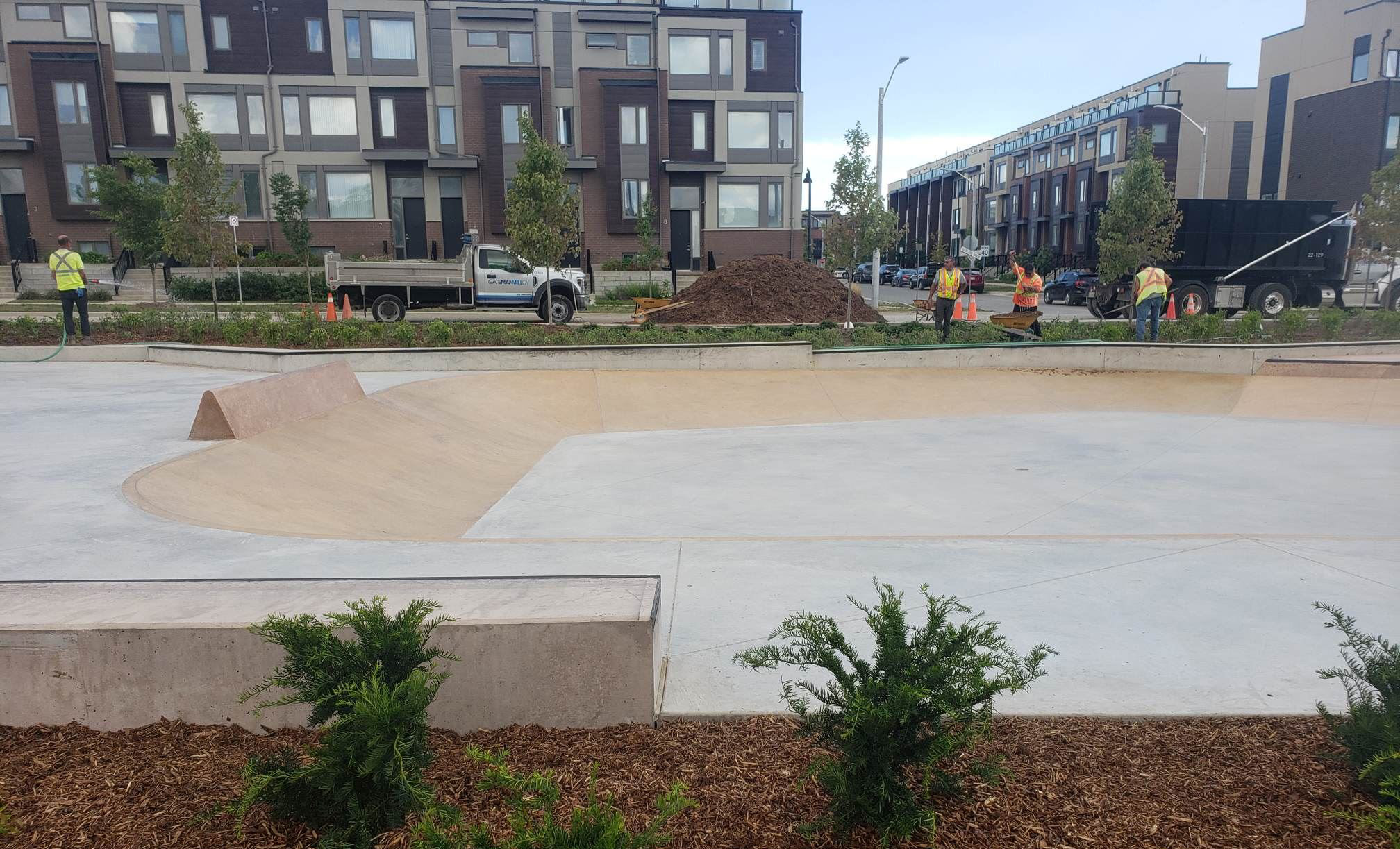 downsview skatepark